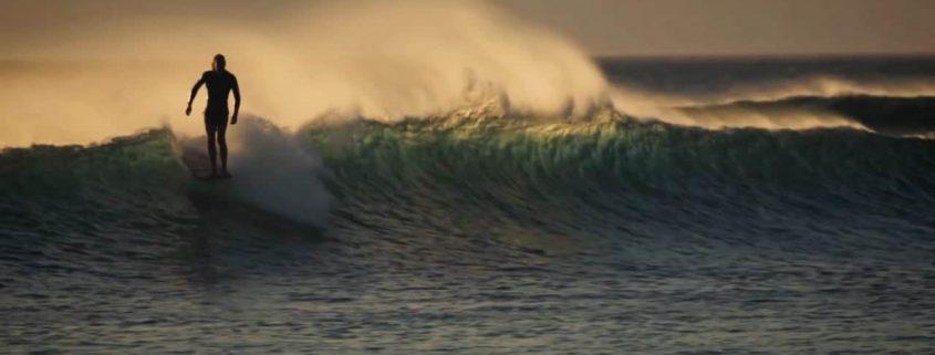Almond Surf Boards Leche Miel