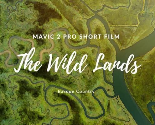 wild lands